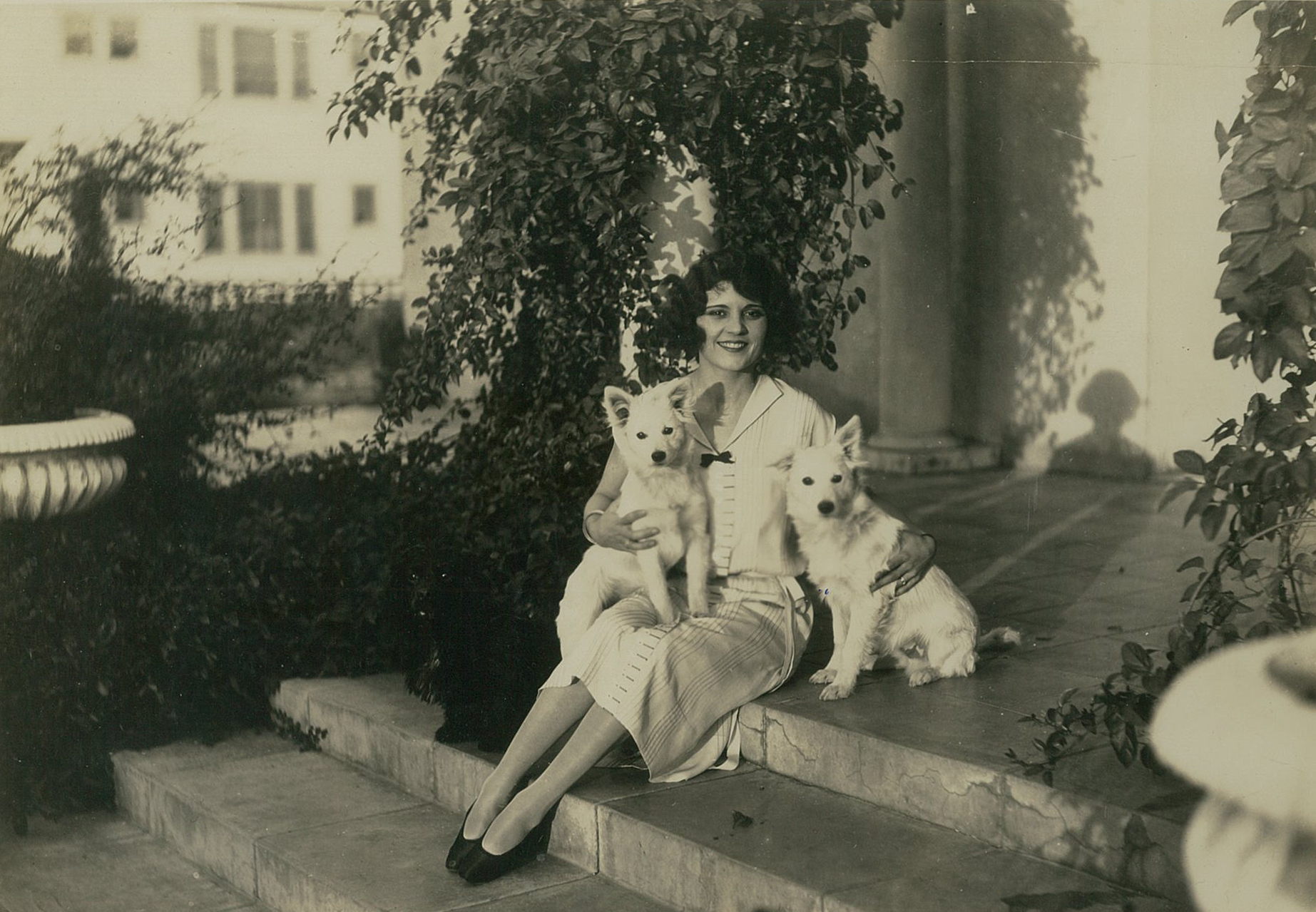 Claire Adams Mackinnon with her dogs