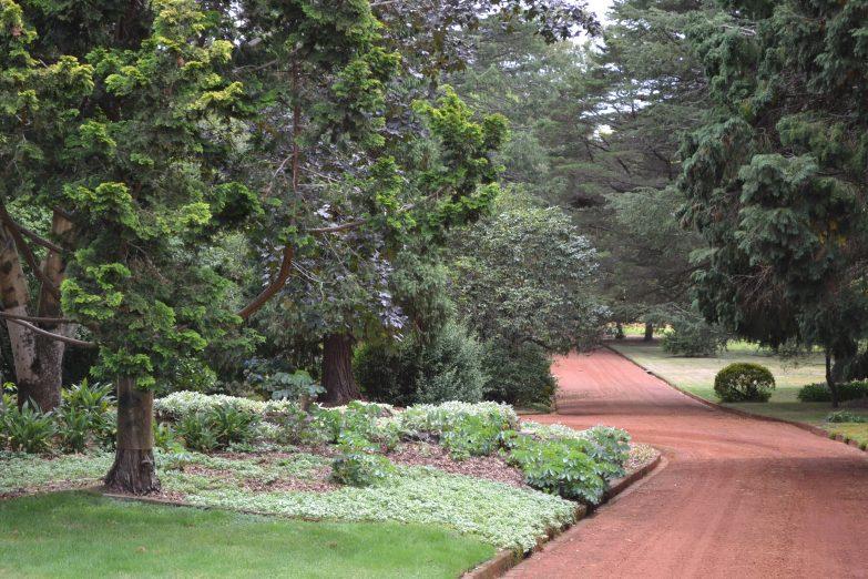 Retford Park garden open day driveway