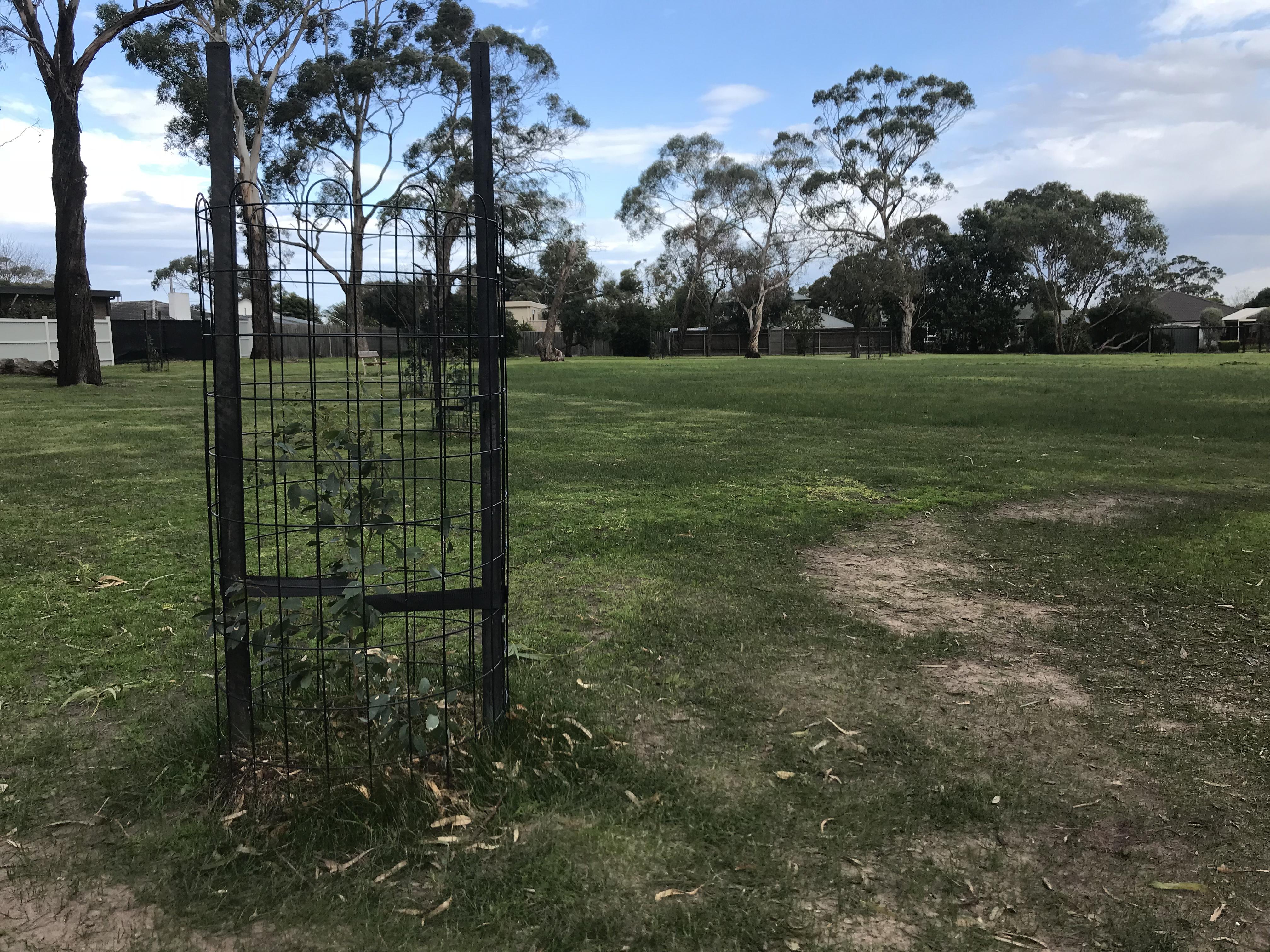 John Butler Reserve, Mount Eliza