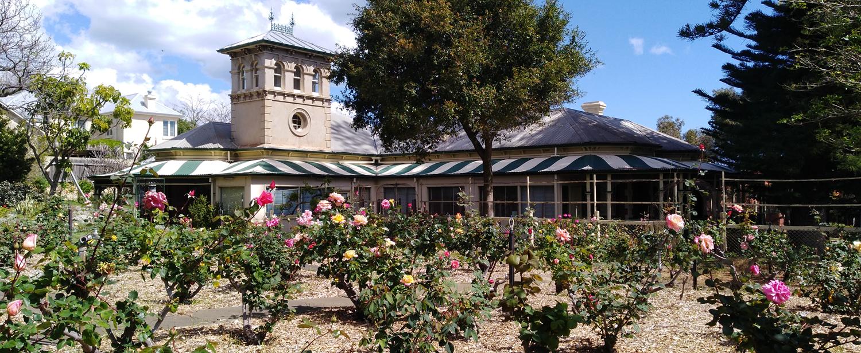 Samson House gardens