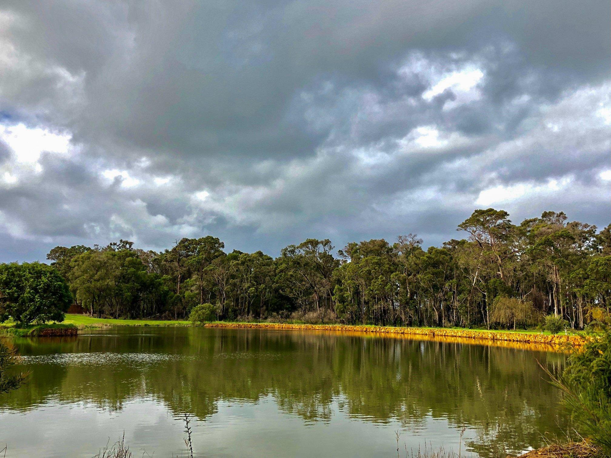 Parkwater Estate Bushland