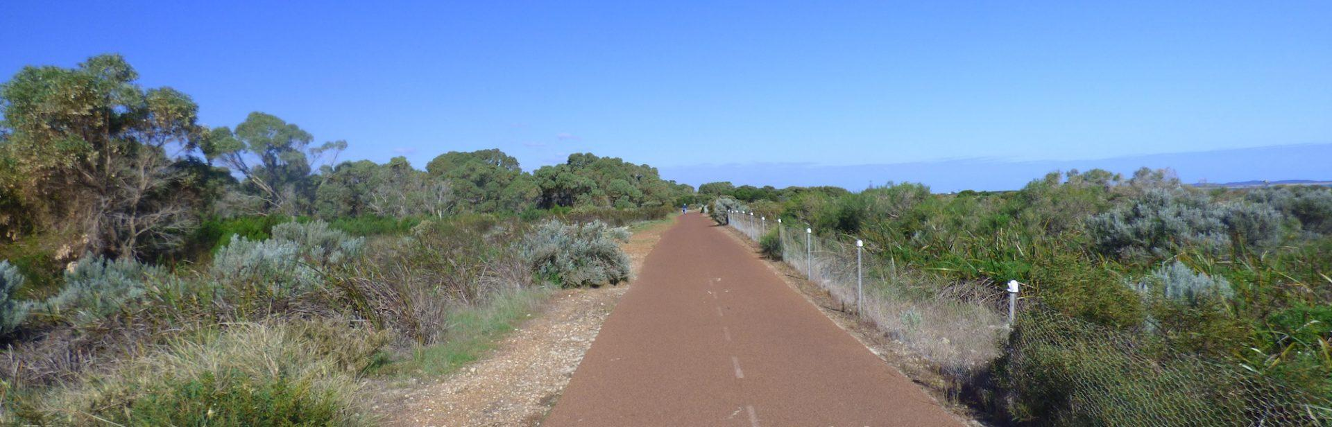 Part of the path along the Coogee Audiowalk